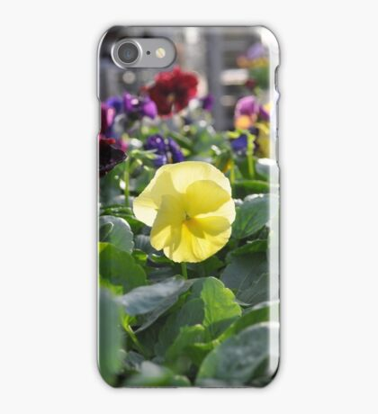Little Yellow Flower iPhone Case/Skin