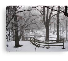 Winter's Color in Black and White... Canvas Print