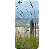 Storm Fence iPhone Case/Skin