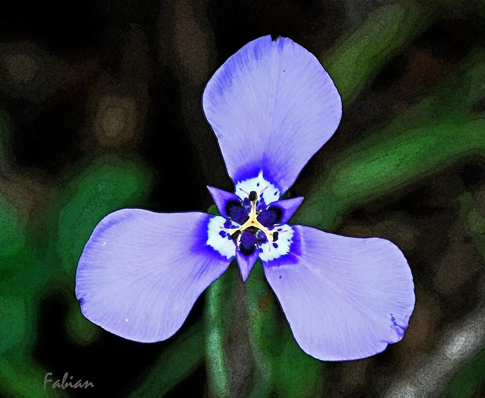 Purple Flower by photo77