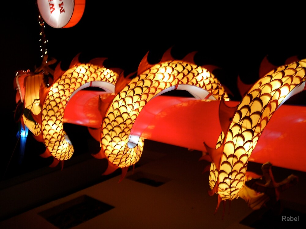 Vasek Festival Dragon at night, Singapore by Rebel