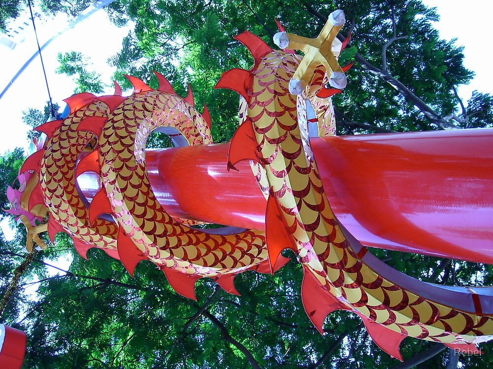 Vasek Festival Dragon, Singapore by Rebel