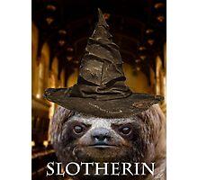 Slotherin Photographic Print