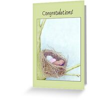 Bird's Nest Congratulations Greeting Card