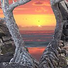 "Sunrise with pandanus frame and caption ""How Much Better Than This Can It Get?"" by Cathie Sherwood"