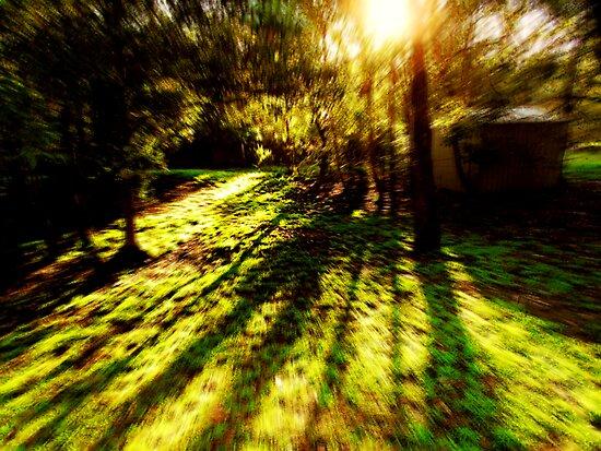 Nature Rush by webgrrl