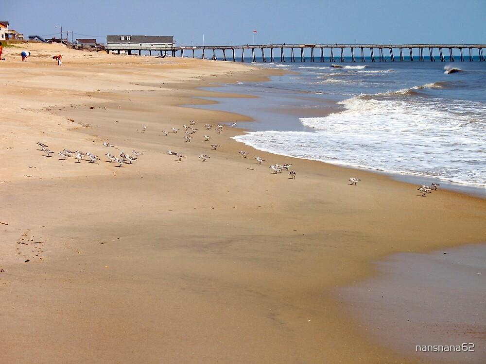 Kitty Hawk Morning Walking on the Beach by nansnana62
