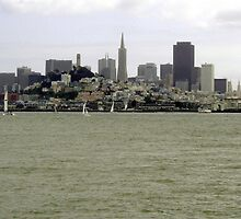 San Francisco From Water by nansnana62