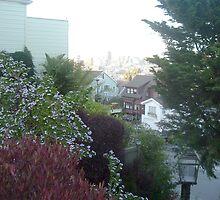 San Francisco City Street View by nansnana62