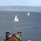 Sail Boats in The SF Bay by nansnana62