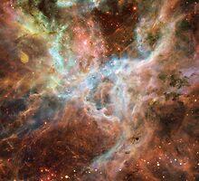Tarantula Nebula by sweetzen