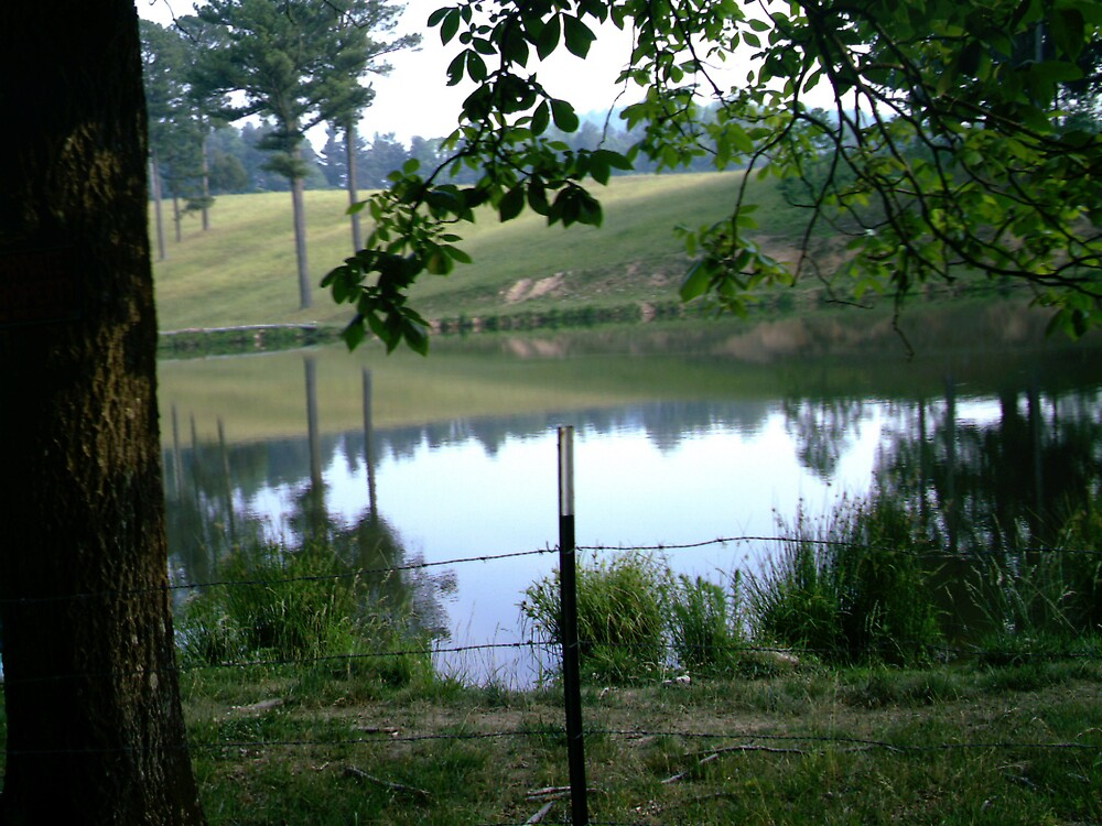 Lake! by volcomgrl17