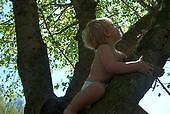 bubbie in a tree by lkey