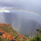 Waimea Canyon Rainbow by wyllys