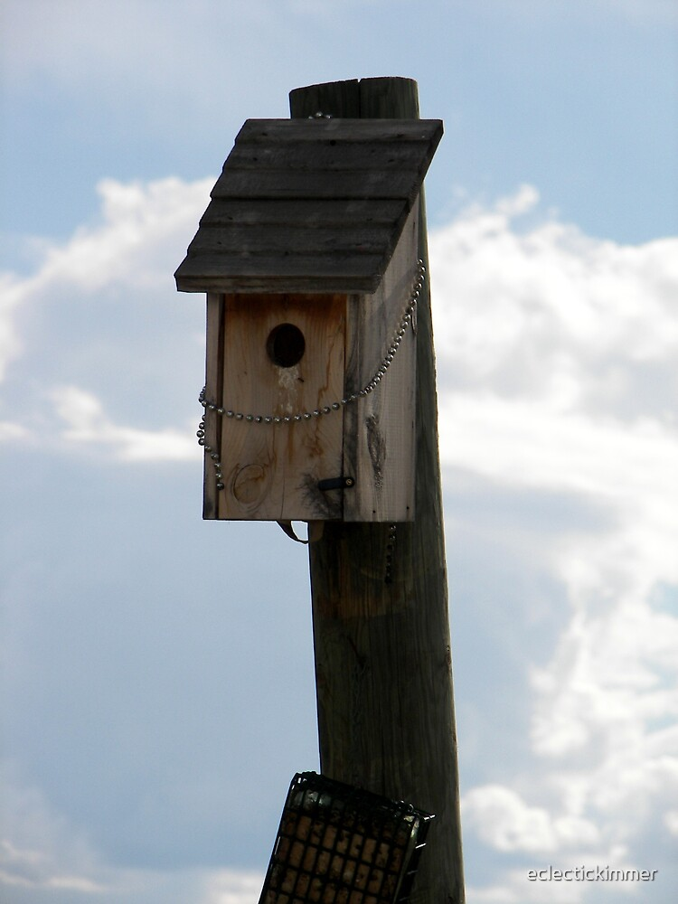 Mountain Birdhouse by eclectickimmer
