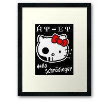 Hello Schrodinger Framed Print