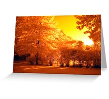 Setting Sun Greeting Card