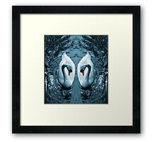 Swan III Framed Print