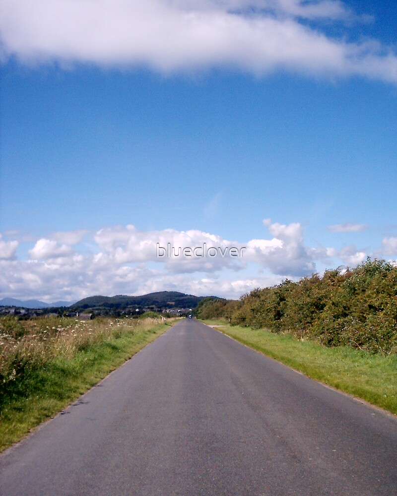 Straight Road by Airfield by blueclover