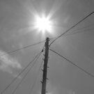 Midday Sun. by Vulcha