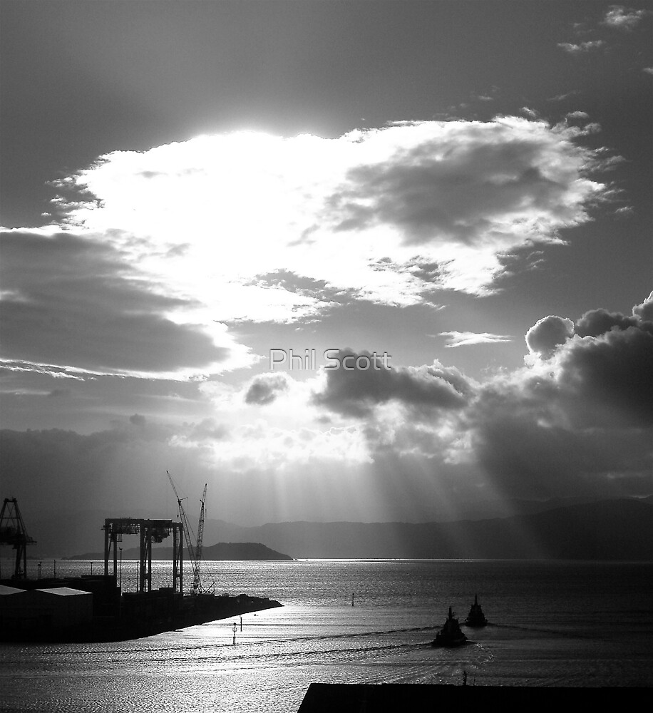 Wellington Harbour by Phil Scott