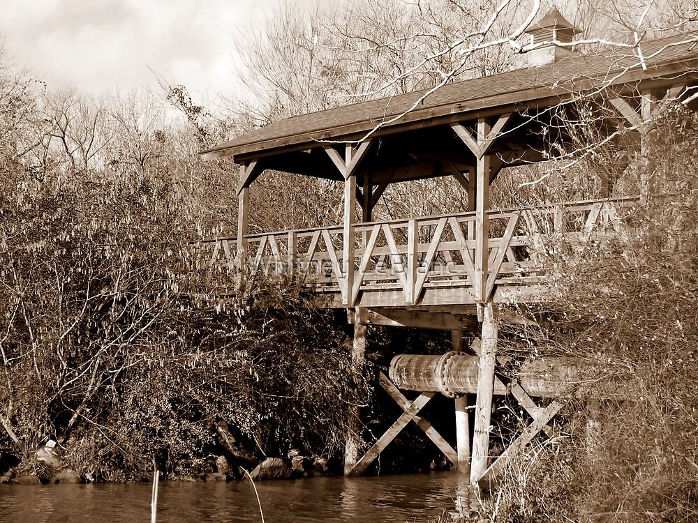 sepia bridge by Whitney LeBlanc