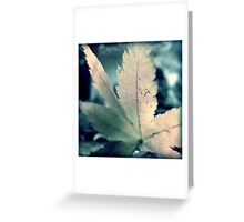 Chilled Colour Greeting Card