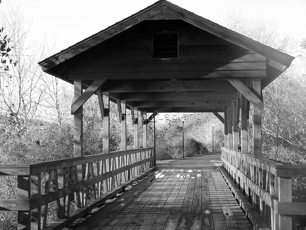 Black and White Bridge by Whitney LeBlanc
