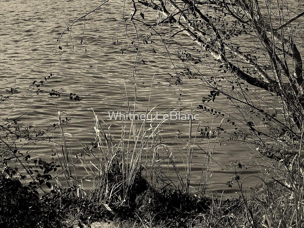 Riverside by Whitney LeBlanc