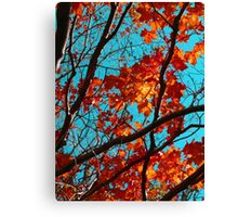 Sunny Red Leaves with Branches Canvas Print