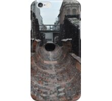 Museo del Templo Mayor  iPhone Case/Skin