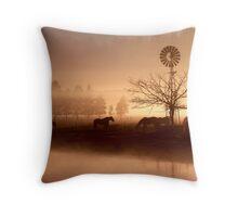 Winter fog at Richomond 2 Throw Pillow