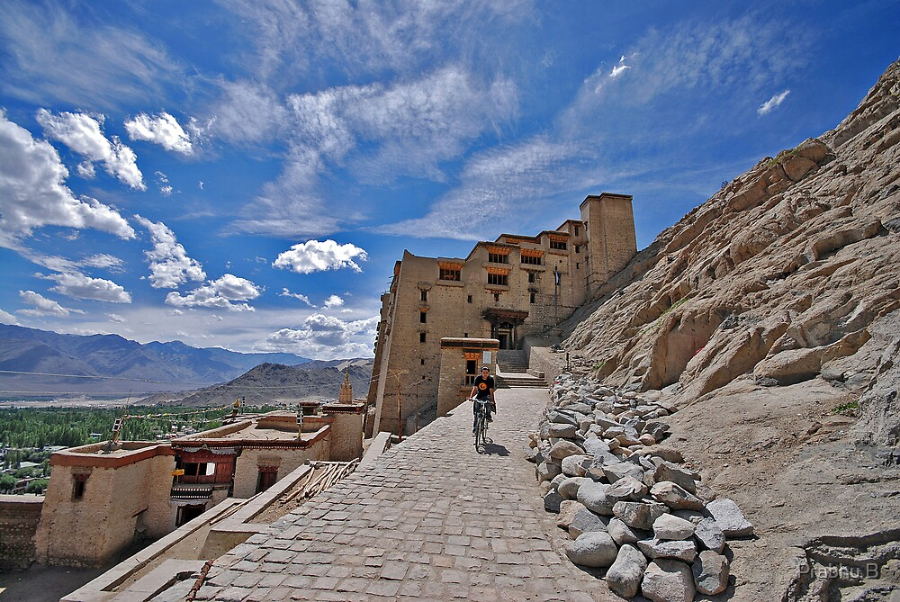 Leh Palace by Prabhu B