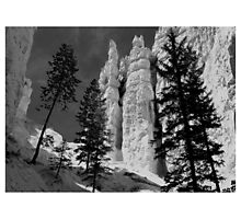 Bryce Canyon 1 Photographic Print