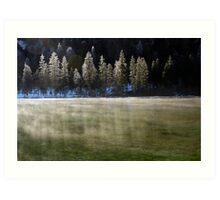 Winter Haze Art Print
