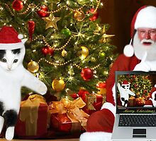 "✰˚ ˛★* ""SANTA IF THEY COULD ONLY SEE US NOW"" HO ho HO ✰˚ ˛★* by ✿✿ Bonita ✿✿ ђєℓℓσ"