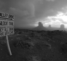 Navajo Land 4 by Jerzy Bergander