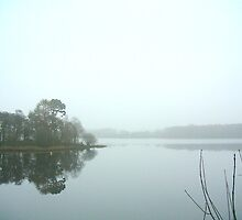 Mist on the Loch by Val Dobson