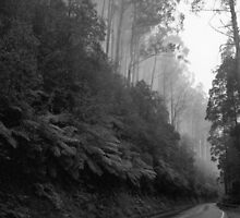 The Black Spur by Michael Eyssens