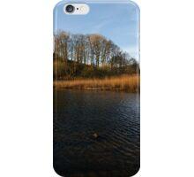 Elterwater iPhone Case/Skin