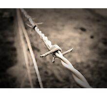 Barbed Wire Fence Photographic Print
