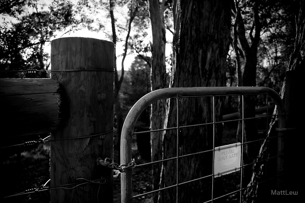 Black Gate by MattLew
