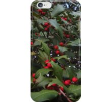 Deck The Halls iPhone Case/Skin