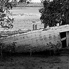 Abandon[ed] Ship by BigRed