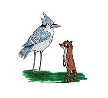Mordecai and Rigby Photographic Print