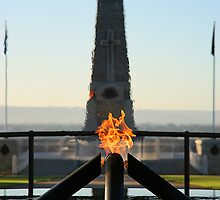 Eternal Flame and State War Memorial, Kings Park, Perth by Martin Pot