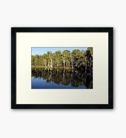 'Mirror Mirror' Framed Print