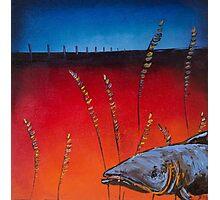 Prairie Salmon Photographic Print