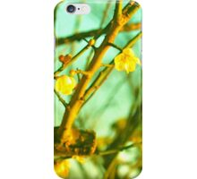 Wistful Cherry Blossoms iPhone Case/Skin