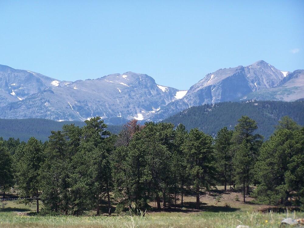 Colorado by msjan